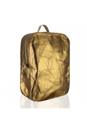 Epidotte - Back Pack Gold